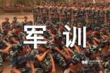 【精华】300字军训心得体会范文合集五篇