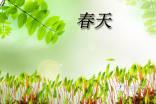 【精选】小学春天作文300字三篇